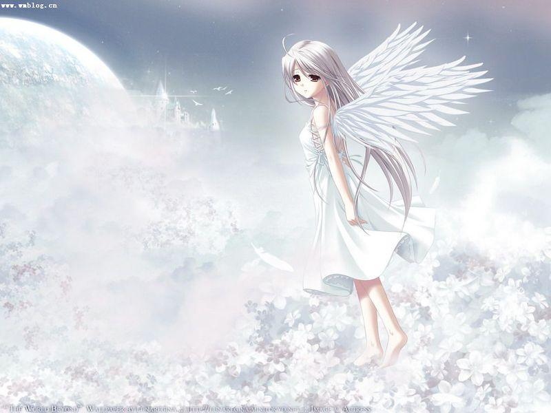 如果我有一双翅膀-刘若英 - 迷路的羔羊 - 迷路的羔羊