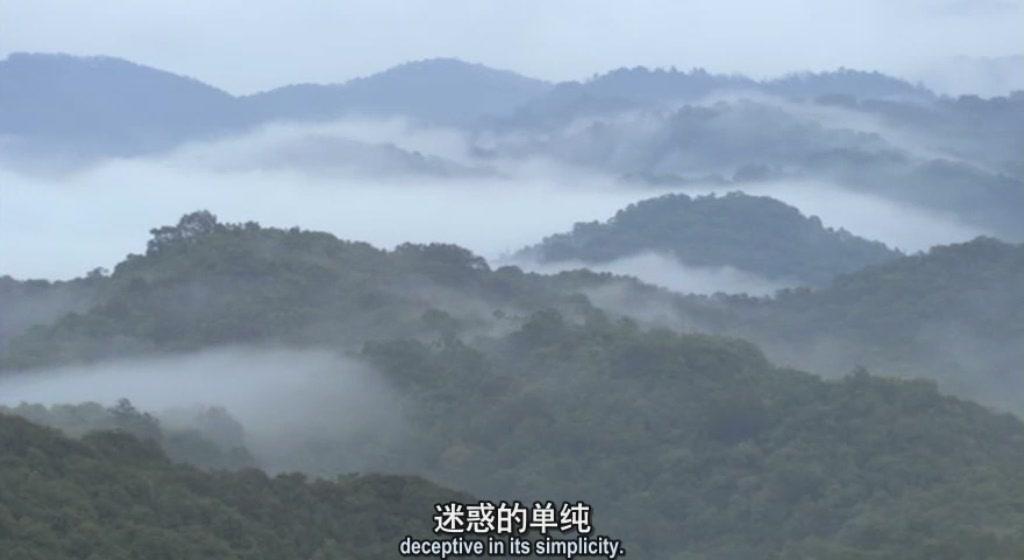 《BBC Wild China》一部不错的自然记录片《美丽中国》 - widebright - widebright的个人空间
