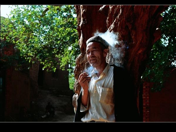[原创]神圣芳草地---爱的奉献(3) - 雪山老人 - 雪山老人的博客
