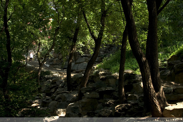 颐和园的自然景观 - 刘炜大老虎 - liuwei77997的博客