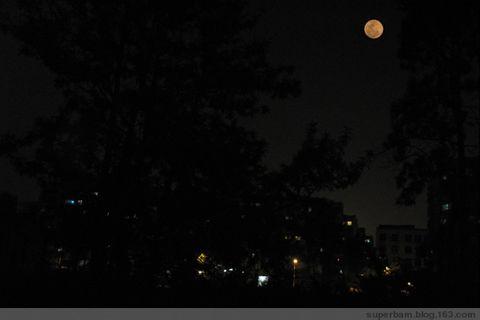 兔子与月亮 - 秋千索 - 我爱小清新
