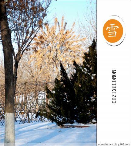 原创图文——雪(三) - MOMO - MOMO 的博客