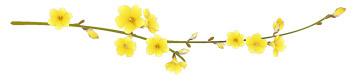 网和蝶/和素雅清香 - 一掬茗香 - 一掬茗香的博客