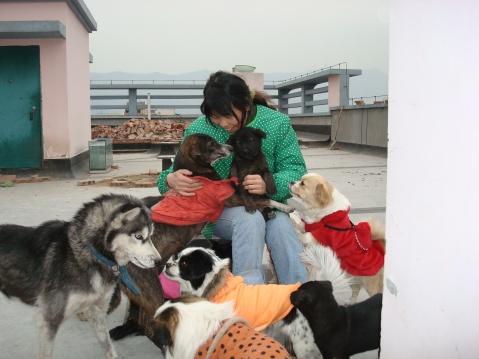 瞧这一家子(救助的小黑母子们) - 广元市流浪动物救助站 - 四川启明小动物保护中心广元救助站的博客