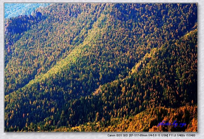 层林尽染管涔山【原】 - 自由诗 - 人文历史自然 诗词曲赋杂谈