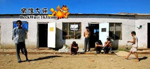 猫眼儿瞧人之07·《 农民工的秋天记忆》(16图) - 懒馋大师 - 懒馋大师的猫样生活