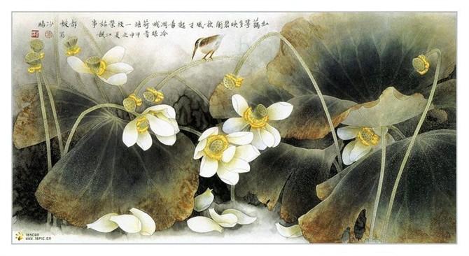 荷韵悠悠 - 东岳 - dongyue195 的博客