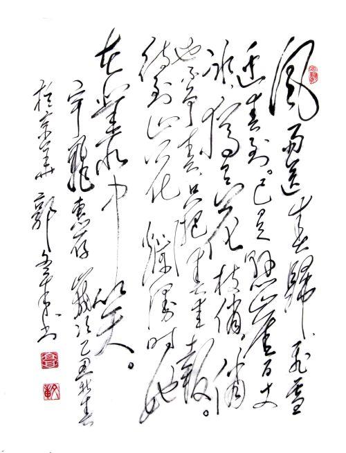 给沧海的字 - guowz2008 - 郭文章毛体书法