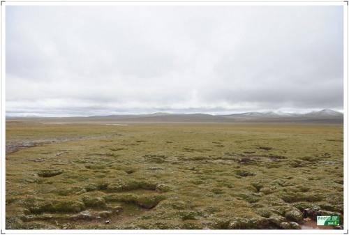 自驾进藏10:翻越海拔5231米的唐古拉山 - 刘兴亮 - 刘兴亮的IT老巢
