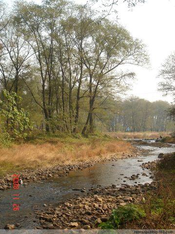 溪、树、阁(原创) - 木头格子 - 下营街三十八号