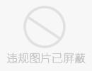 精美的溶图背景 - liqinghua1189 - 枯树逢春