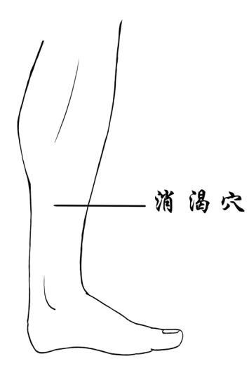 [转载]消渴穴鈥斺斦镏巍⒃げ馓悄虿〉木馄嫜