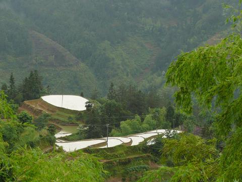 swf湖南桂东县是全国生态县,独特的山区环境,蕴藏着丰富的自然资源.
