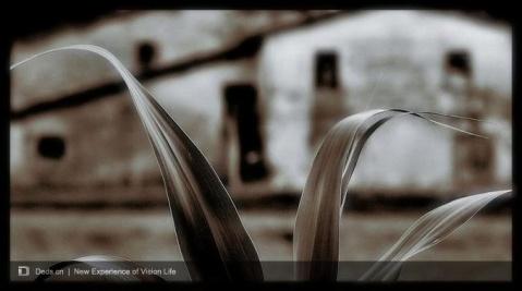 摄影师Mg Lizi风光纪实摄影欣赏 - 五线空间 - 五线空间陶瓷家饰