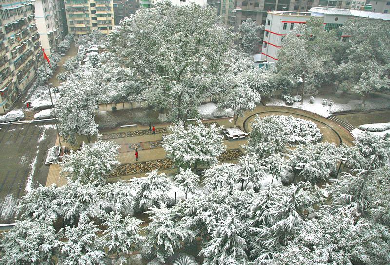 〔原创〕二十年来的第一场雪 - 阿成 - 我的博客