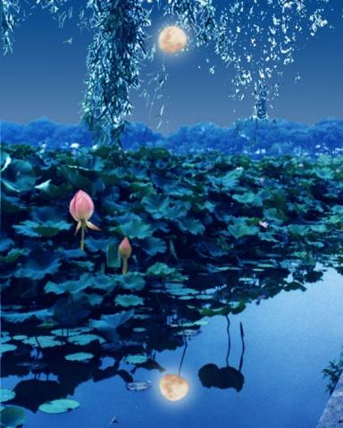 (原创)花好月圆.藏格诗 - 疏勒河的红柳 - 疏勒河的红柳