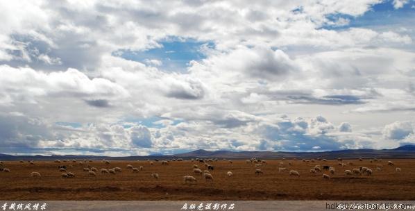 """[摄影.原创] 青藏线(三十七)通天河在桥""""6""""11P  - 扁脑壳 - 感悟人生"""