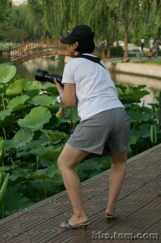 摄影的各种姿势(搞笑)转 - 沙漠胡杨 - 沙漠胡杨