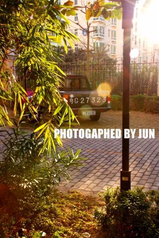 JUST PHOTOGRAPHY - Des ellegarcons - des elle' s