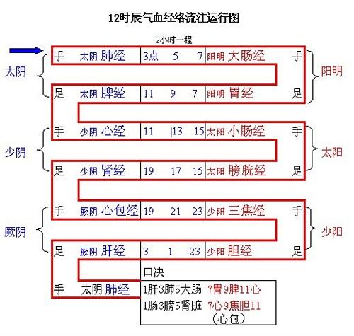 中医图谱 - cimeigui629 - cimeigui629的博客