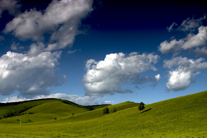 (原创摄影)美丽的草原我的家 - 刘炜大老虎 - liuwei77997的博客