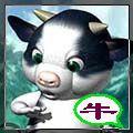 多样式的滚动图片 - hdly006502 - .