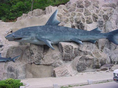 (原创)大连掠影 海之韵的十八盘裸岩壁雕