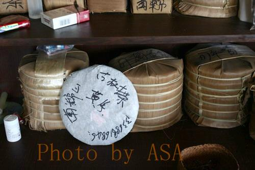 云南勐海南糯山的大叶普洱茶 - 懒蛇阿沙 - 懒蛇阿沙的博客