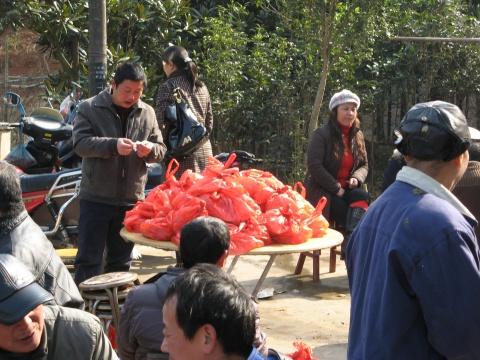 农家乐续(原) - 人在旅途 - 净土的博客