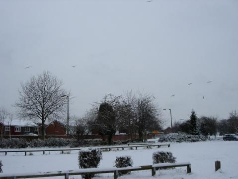 Snowing England-2 - SS - 绝对灿烂的一天