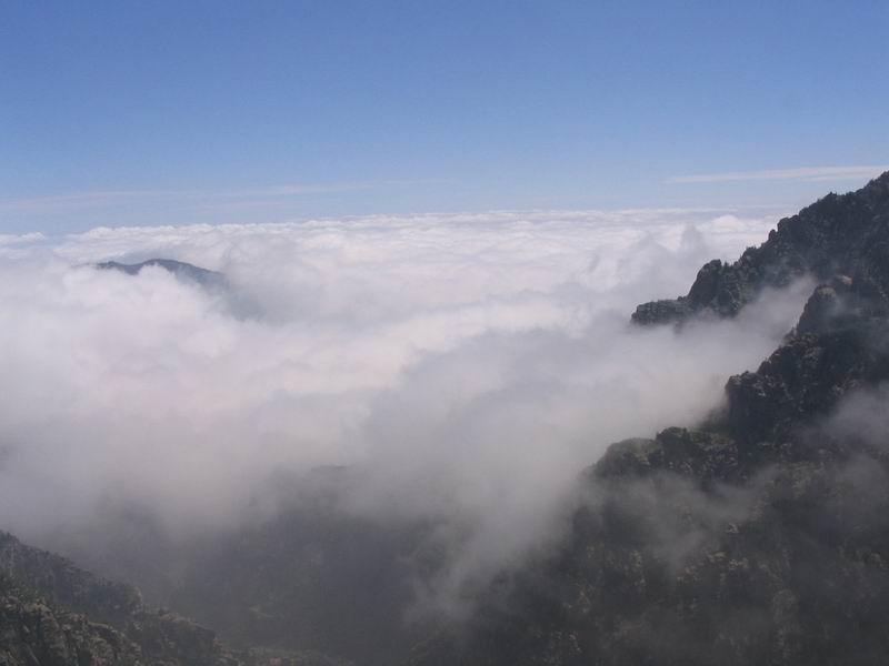 (原创近体诗)五律 梦回兰山 - 山中牧羊人 - fjx5029701 的博客
