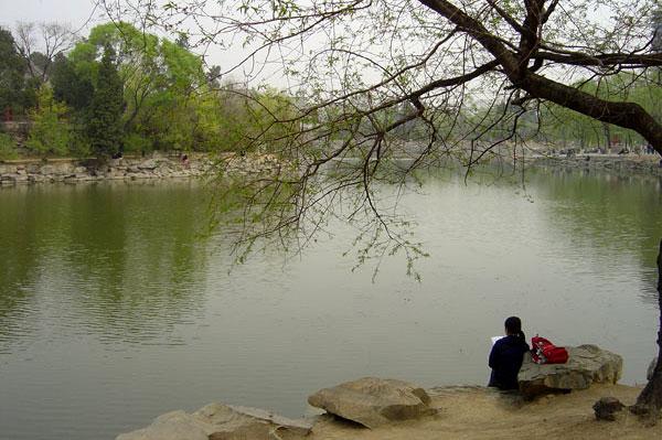 20040411 北京大学游记: 北京春色 - 天外飞熊 - 天外飞熊
