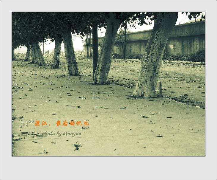 [原]滨江,最后的记忆(9P-1) - 多言 - 我色我乐 我言我心