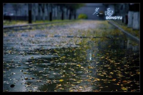 雨季 - 荫子 - 倾听夜色