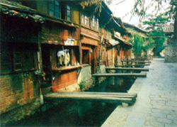 丽江的毒药香 - 中华遗产 - 《中华遗产》