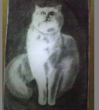 布贴画.虽然不是每次都得奖,但她画画的兴趣还是很高,从幼儿园