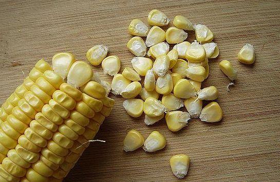 玉米粒钓饵钓大鱼 - 靓蛋 - 中 国 职 业 教 育 网