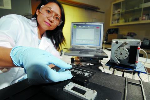 禽流感病毒检测:和时间赛跑 - 科学新闻 - 《科学新闻》杂志官方博客