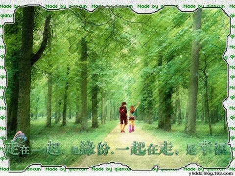 缘分/幸福 - TOTO - Wandering Walnut……