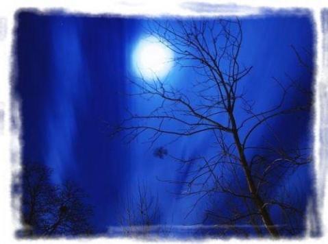 夜曲 - 荫子 - 倾听夜色