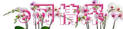 E网情深【网络情缘】火凤凰 - 火凤凰 - hfh9989的博客