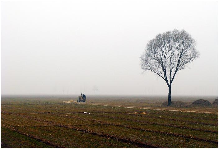 09年春节老婆回娘家---风景篇 - 漂泊   - 漂泊的博客