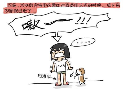 九鹰白狗爪 - 小步 - 小步漫画日记