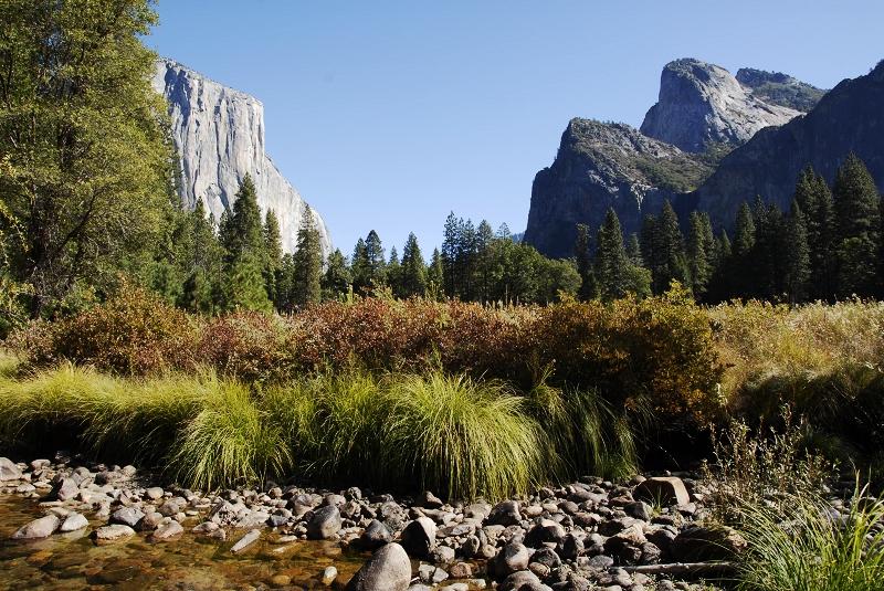 最美的美国 - 西樱 - 走马观景