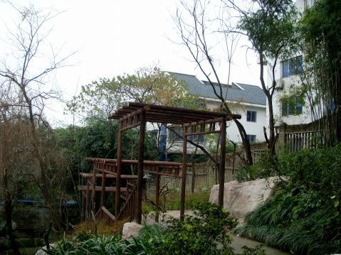 重庆花卉园〔原摄〕 - 狮子山上雾茫茫 - 狮子山上雾茫茫攝影集 的博客