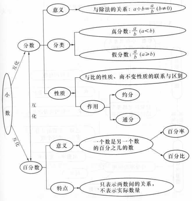 小学数学总复习知识结构图(二