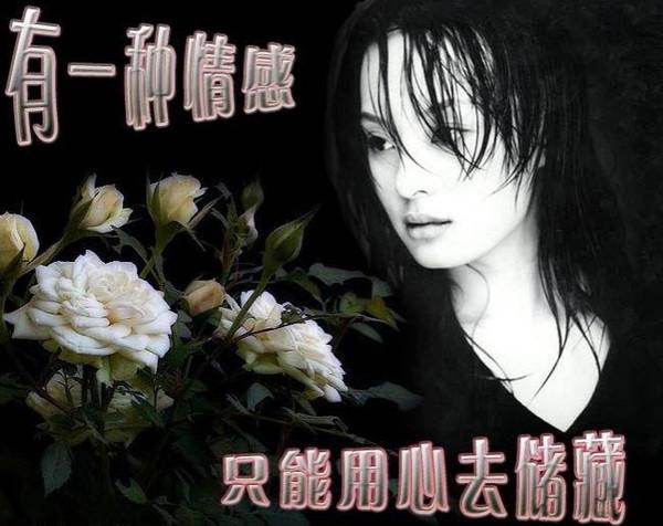 精美圖文欣賞81  - 唐老鴨(kenltx) - 唐老鴨(kenltx)的博客