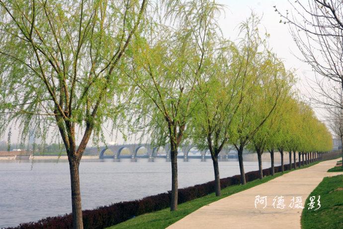 通州燃灯塔与京杭大运河 - 阿德 - 图说北京(阿德摄影)BLOG