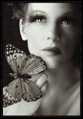 (原创)谁允许蝴蝶直接飞入这个区域 - elford - Elfordcolor的博客