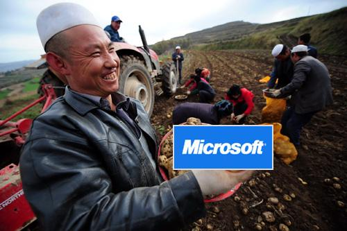 IT路况--未来就靠农民卖地了 - 炳叔 - 炳叔的博客